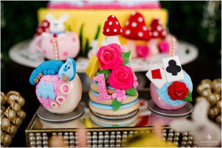 aniversário infantil criança laguna sc fotógrafo festa tema decoração (19)