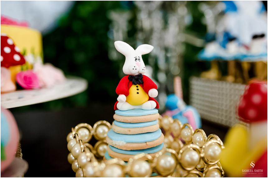 aniversário infantil criança laguna sc fotógrafo festa tema derocação (7)