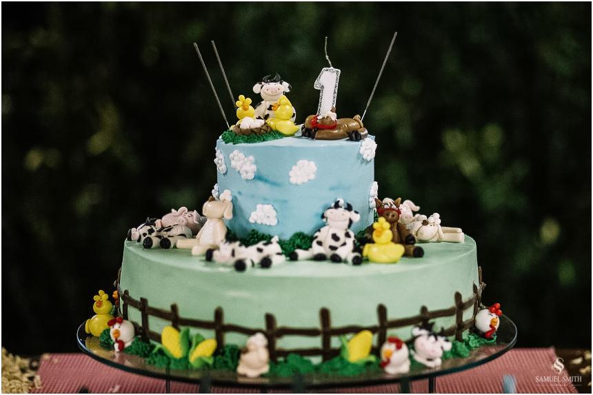 aniversario-infantil-crianca-armazem-sc-fotografo-festa-de-1-ano-tema-derocacao-1-ano-1-aninho-samuel-smith-4
