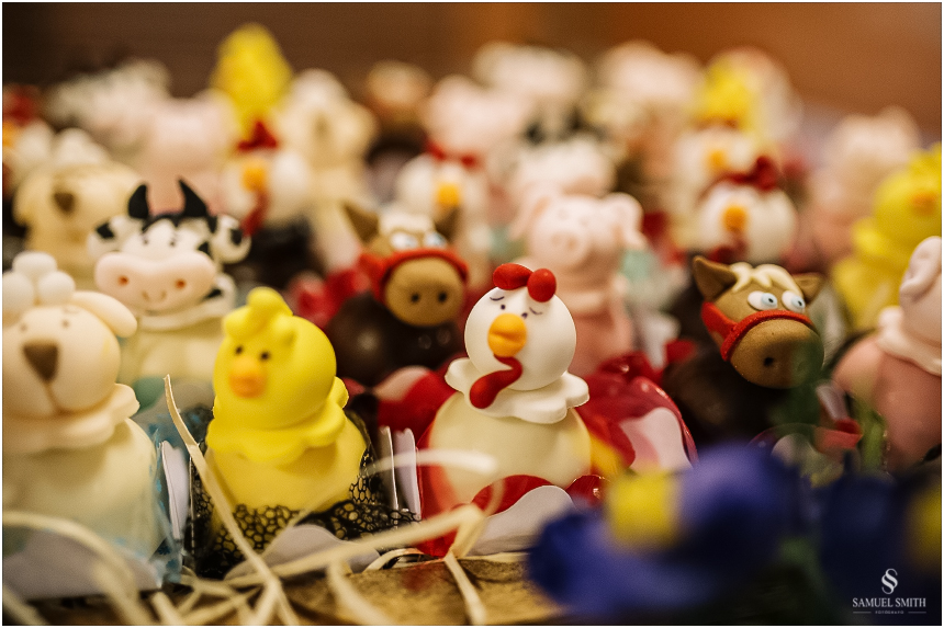 aniversario-infantil-crianca-armazem-sc-fotografo-festa-de-1-ano-tema-derocacao-1-ano-1-aninho-samuel-smith-9