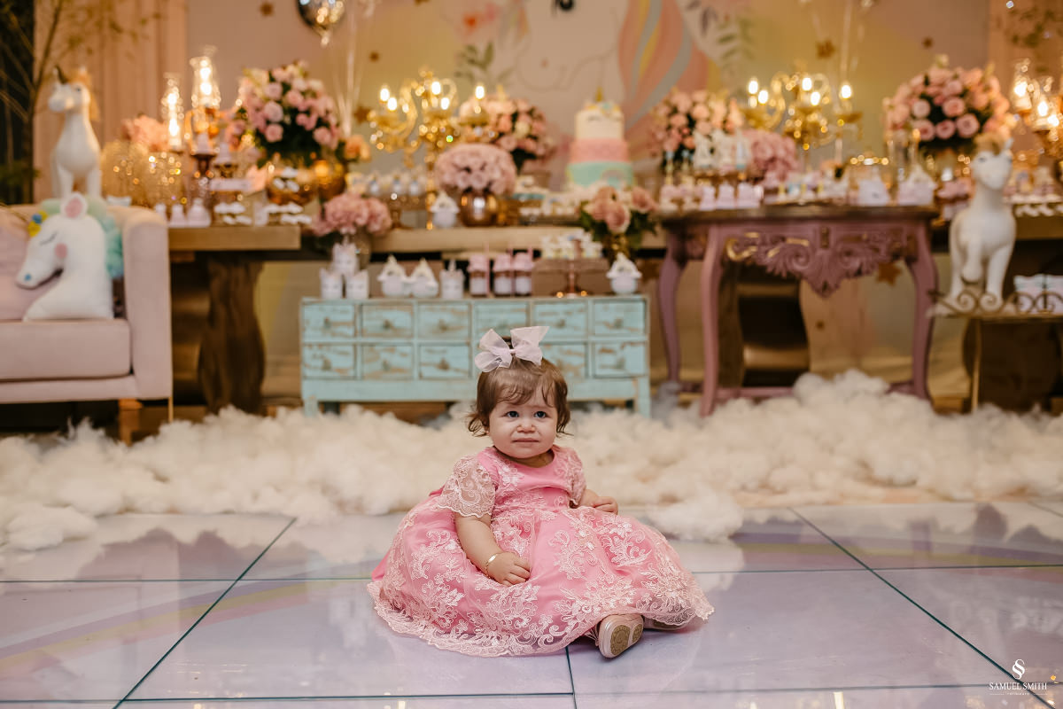 aniversário infantil festa de 1 ano fotógrafo em tubarão sc, vida park eventos, samuel smith (29)